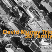David Murray Trio - 3d Family