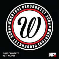 Sam Dungate - Is It House