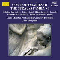 Czech Chamber Philharmonic Orchestra Pardubice - Contemporaries of the Strauss Family, Vol. 1