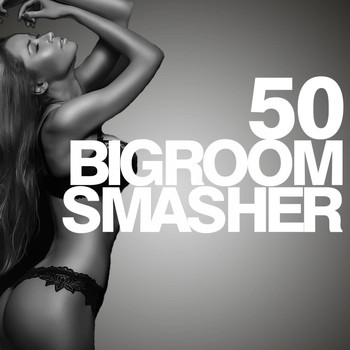 Various Artists - 50 Bigroom Smasher