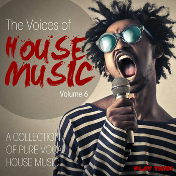Various Artists - The Voices Of House Music, Vol. 6