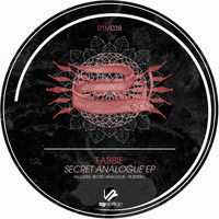 Fabbie - Secret Analogue EP
