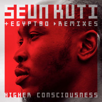 Seun Kuti & Egypt 80 / - Higher Consciouness (remixes)