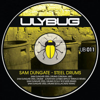 Sam Dungate - Steel Drums