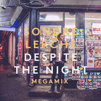 Sondre Lerche - Despite The Night (Megamix)