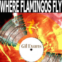 Gil Evans - Where Flamingos Fly