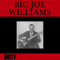 Big Joe Williams - Big Joe Williams (Explicit)