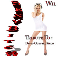 wil - Sexy Bitch: Tribute to David Guetta, Akon (Explicit)