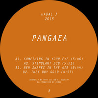 Pangaea - New Shapes in the Air