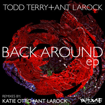Todd Terry - Back Around