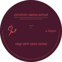 prinzhorn dance school - Reign (Shit Robot Remix)