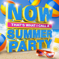 Various - Now That's What I Call a Summer Party