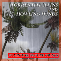 Nature Sounds - Sounds of Nature: Torrential Rains and Howling Winds
