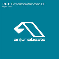 P.O.S. - Remember / Amnesiac
