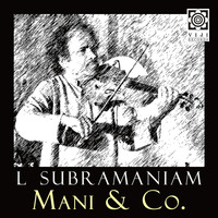 L. Subramaniam - Mani & Co.