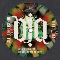 DJ Q - All Junglist