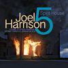 Spirit House (feat. Brian Blade, Cuong Vu, Paul Hanson & Kermit Driscoll)  Joel Harrison
