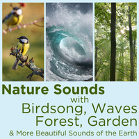 Nature Sounds - Nature Sounds with Birdsong, Waves, Forest, Garden, And More Beautiful Sounds of the Earth!