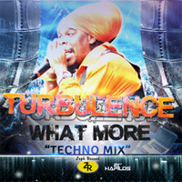 Turbulence - What More - Single