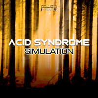 Acid Syndrome - Simulation