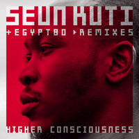 Seun Kuti & Egypt 80 - Higher Consciousness Remix EP