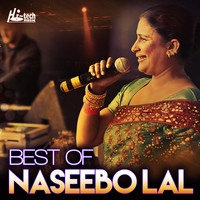 Naseebo Lal - Best of Naseebo Lal