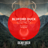Bluford Duck - Electricity