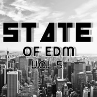 Rich Knochel - State Of EDM, Vol. 5.