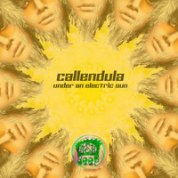 Callendula - Under an Electric Sun