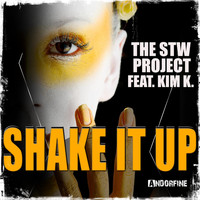 The Stw Project feat. Kim K. - Shake It Up