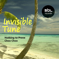 Invisible Tune - Nothing to Prove