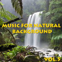 Spirit - Music For Natural Background, Vol.5