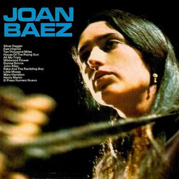 a biography of joan bridge baez a famous folk singer and peace activist