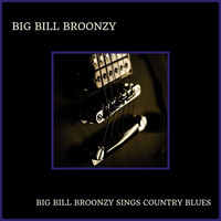 Big Bill Broonzy - Big Bill Broonzy Sings Country Blues