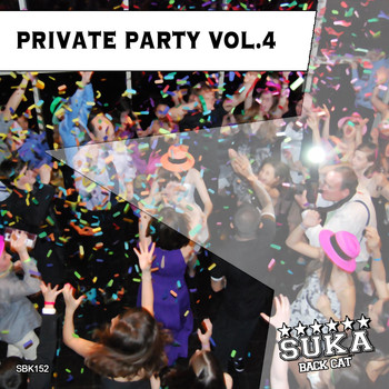 Various Artists - Private Party Vol. 4
