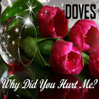 The Doves - Why Did You Hurt Me?