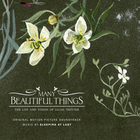 Sleeping At Last - Many Beautiful Things (Original Motion Picture Soundtrack)