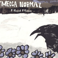 Mecca Normal - Flood Plain
