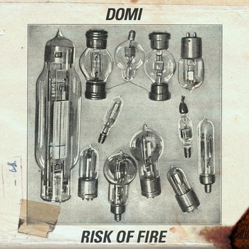 Domi - Risk of Fire