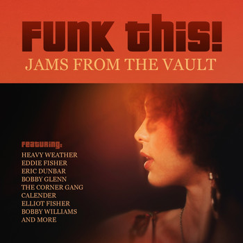 Various Artists - Funk This! Jams from the Vault