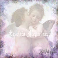 Nightingale - Luscinia Megarhynchos - EP