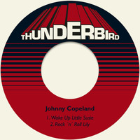Johnny Copeland - Wake up Little Susie