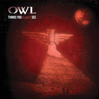 OWL - Things You Can't See