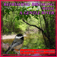 Nature Sounds - Refreshing Birdsong with a Gentle River: 90 Minutes: Nature Sounds