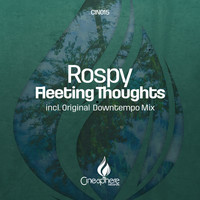 Rospy - Fleeting Thoughts (Downtempo Mix)