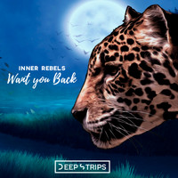 Inner Rebels - Want You Back