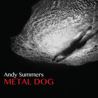 Andy Summers - Metal Dog