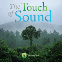The Touch of Sound - Morning Birds