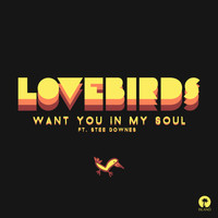 Lovebirds - Want You In My Soul (Remixes)