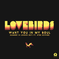 Lovebirds - Want You In My Soul (Summer In London Edit)